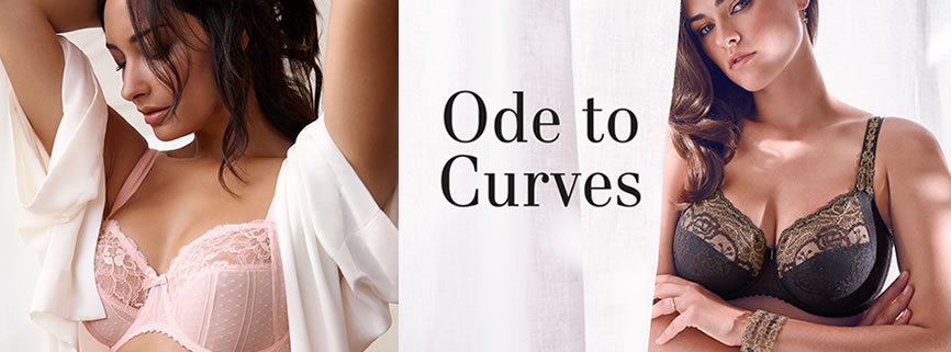 ode to curves